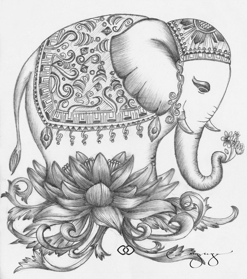 The Elephant Illustration Inspired By The Jim Thompson Handkerchiefs My Late Grandmother Once Owned Elephant Drawing Elephant Tattoos Indian Elephant Tattoo