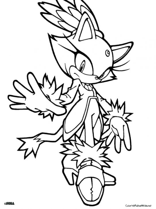 Rogue In Sonic The Hedgehog Coloring Page To Print Online | COLOR ...