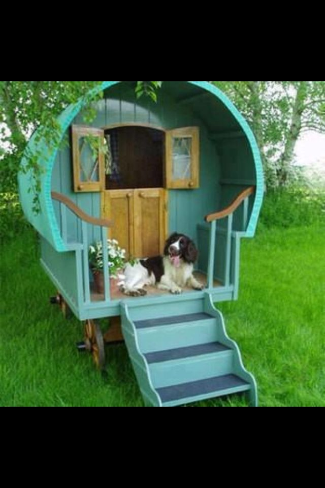 Dream Dog House Cool Dog Houses Dog House Dog House Diy