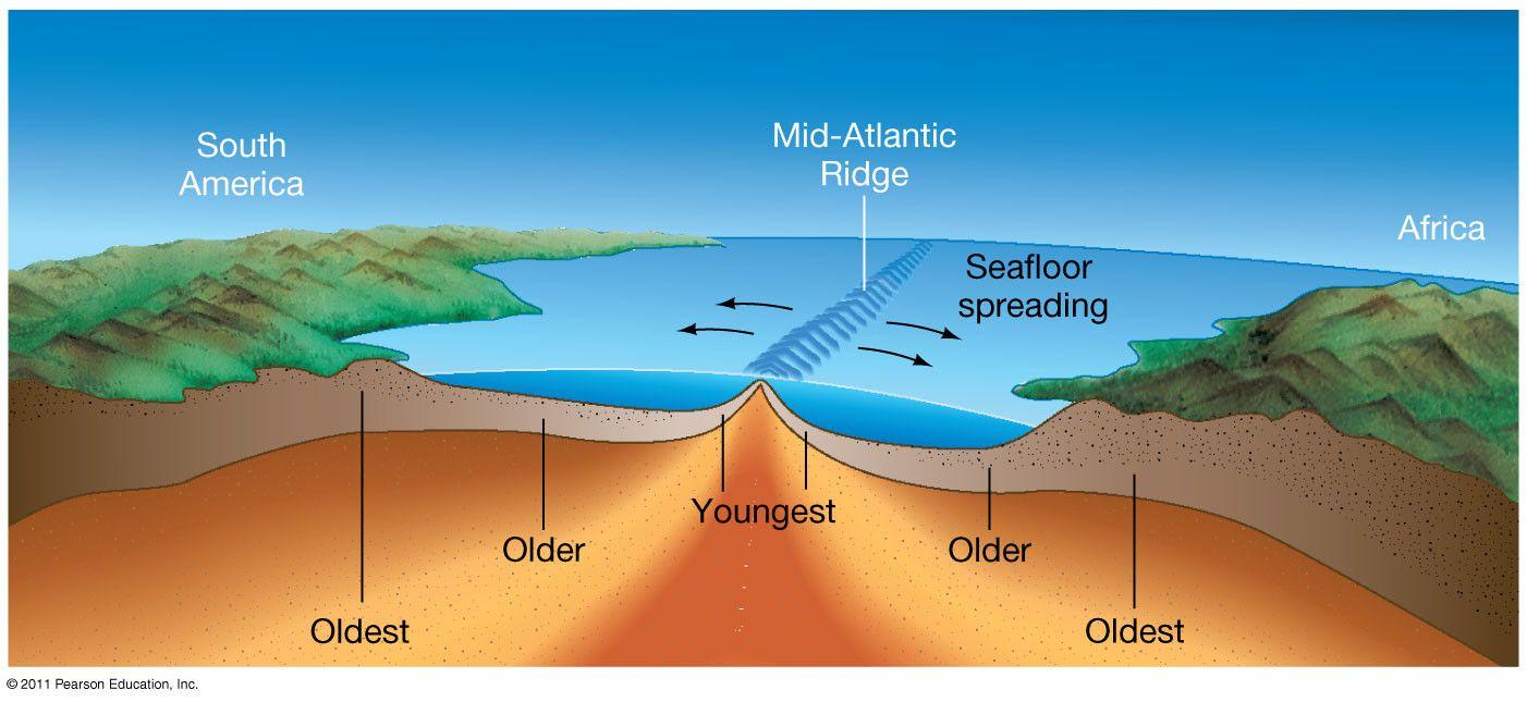 Sea Floor Spreading Worksheet Answer Seafloor Spreading Sea Floor Plate Tectonic Theory [ 645 x 1402 Pixel ]