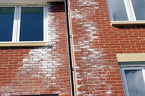 Efflorescence White Crystalline Deposit Of Water Soluble Salts On Surface Of Brick Masonry Not Harmful To Brick Caused When Wat Brick Masonry Masonry Brick