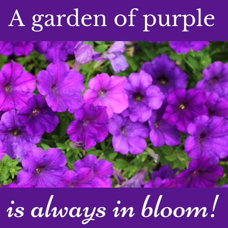 11 Purple Quotes To Share With Those Who Love Purple! in