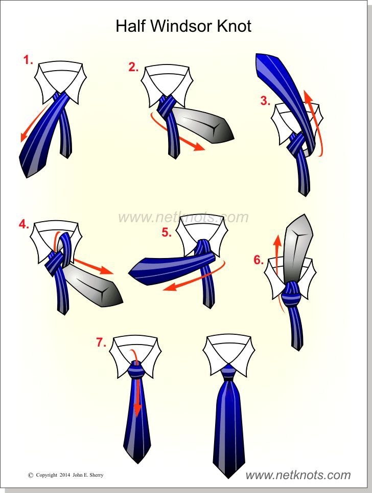 Half Windsor Knot | Knots and Such | Windsor knot ... on