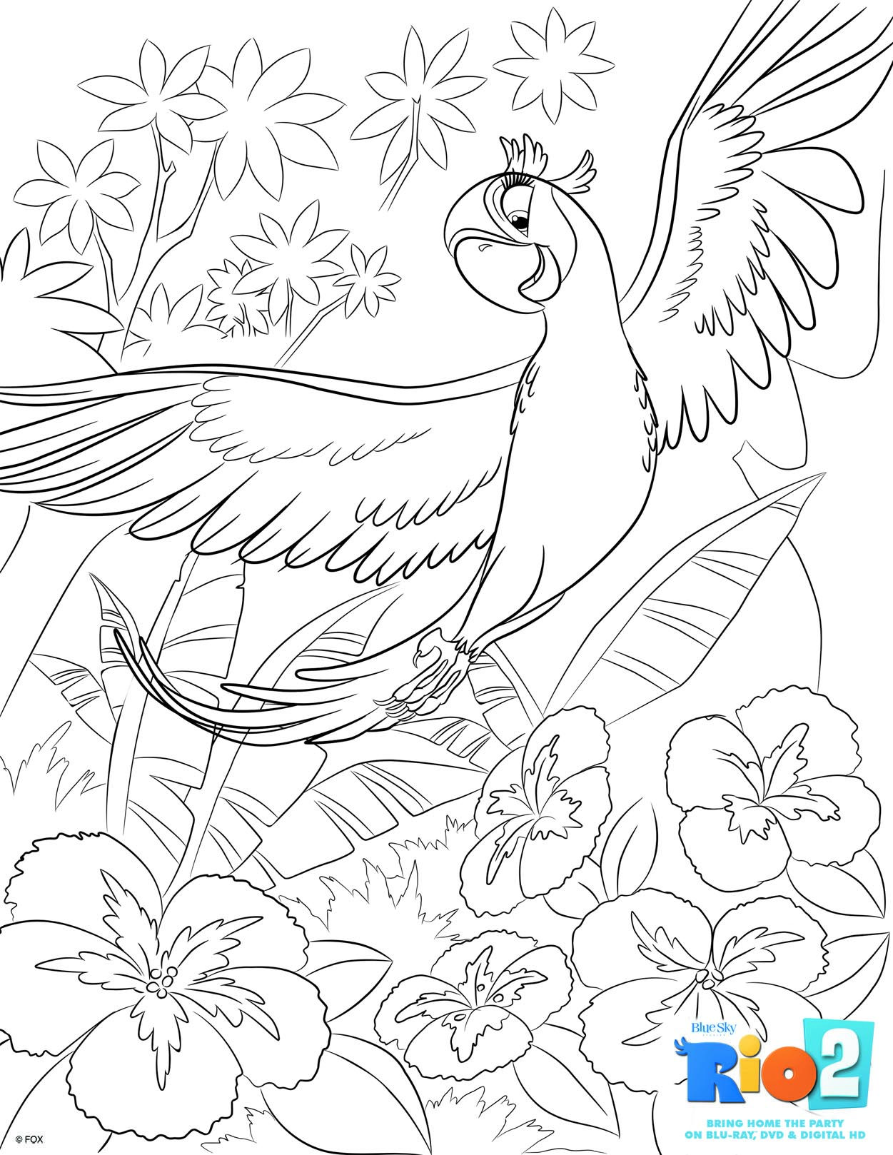 Free Rio 2 Coloring Pages Bird Coloring Pages Coloring Books Coloring Pages