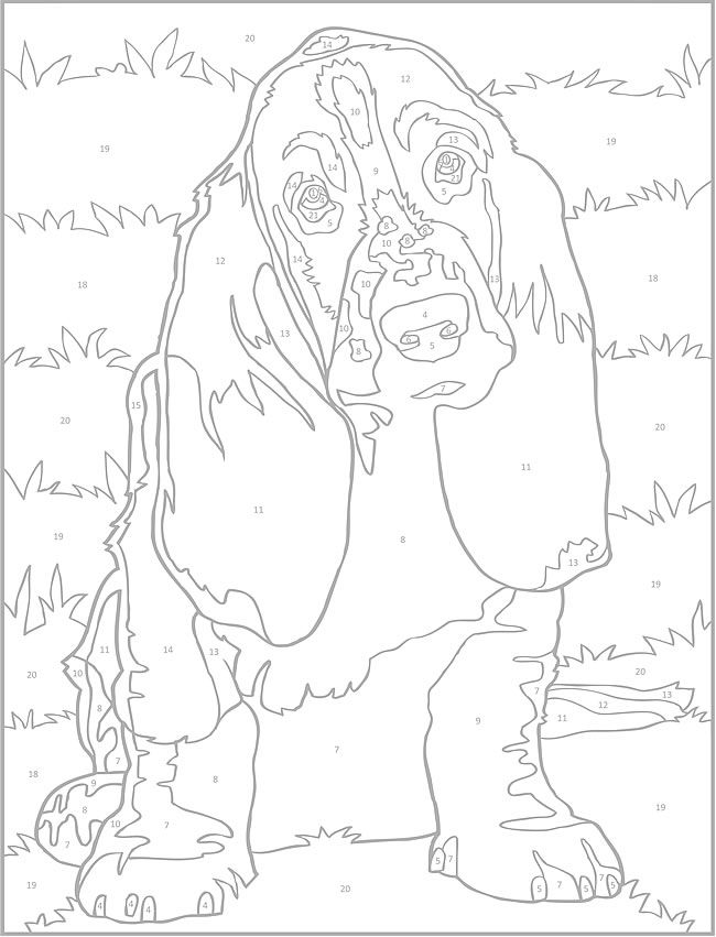 Welcome to Dover Publications Creative Haven Dogs Color by