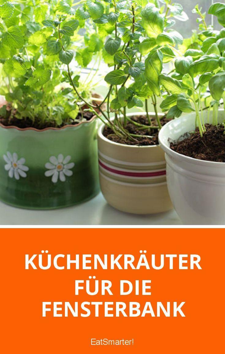 Küchenkräuter für die Fensterbank   http://eatsmarter.de/blogs/green-living/kraeutergarten-fuer-die-fensterbank