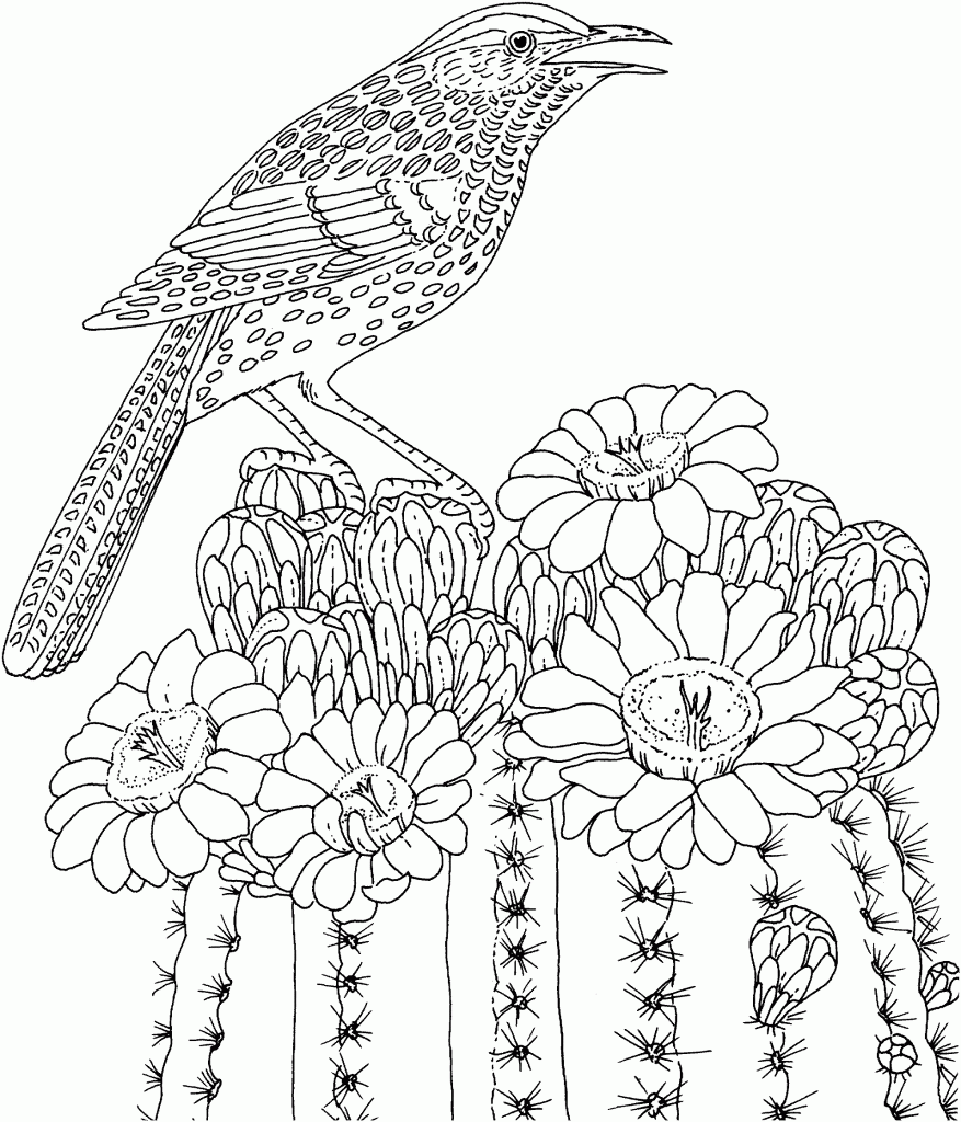 Detailed Bird Challenging Coloring Pages to Print Online - Enjoy ...