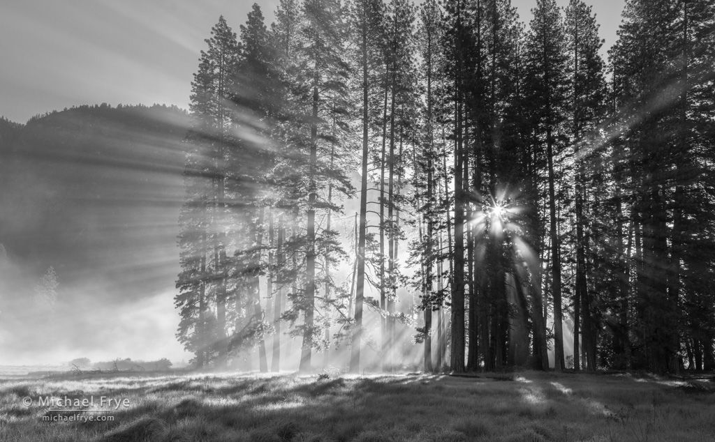 Pines, sunbeams, and mist, Cook's Meadow, Yosemite NP, CA, USA