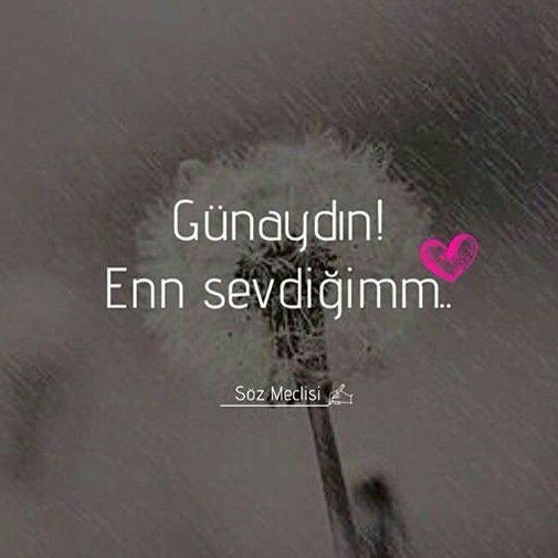 Sevgiliye En Guzel Romantik Gunaydin Mesajlarini Gunaydin Resimlerini Sevgiliye Espirili Gunaydin Cool Words Love Quotes Turkish Quotes