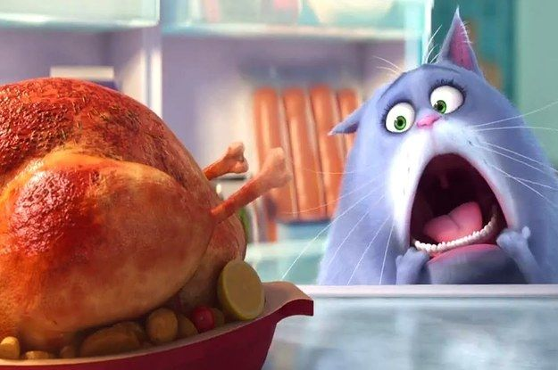 Which Secret Life Of Pets Character Are You 디즈니 그림 디즈니 영화