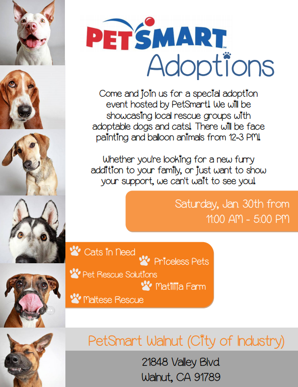 Pet Rescue Solutions Is Joining Petsmart For An Adoption Event There Will Be Other Rescues There Come And Join Pet Adoption Event Event Hosting Dog Adoption
