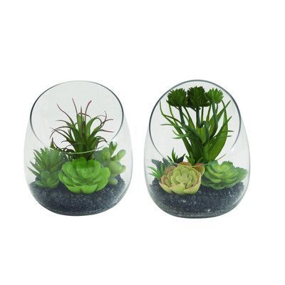 ABCHomeCollection Traditional Terrarium with Plants