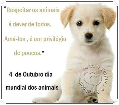 Pin De Teresinha Sotero Gomes Em Amor Dia Dos Animais Frases De