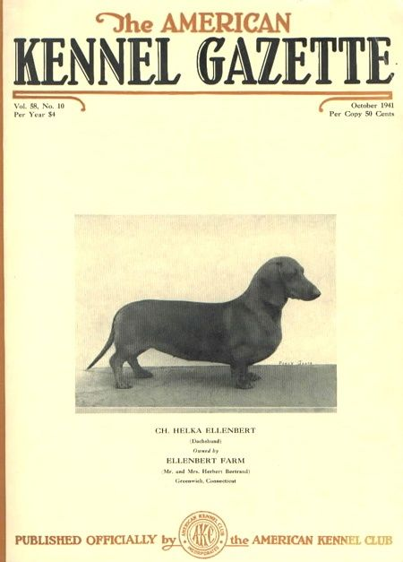Dachshund Clube Doxie American Kennel Club Magazine Cover