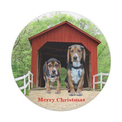 Funny Merry Christmas Beagle Hound Pups Paper Plate Zazzle Com