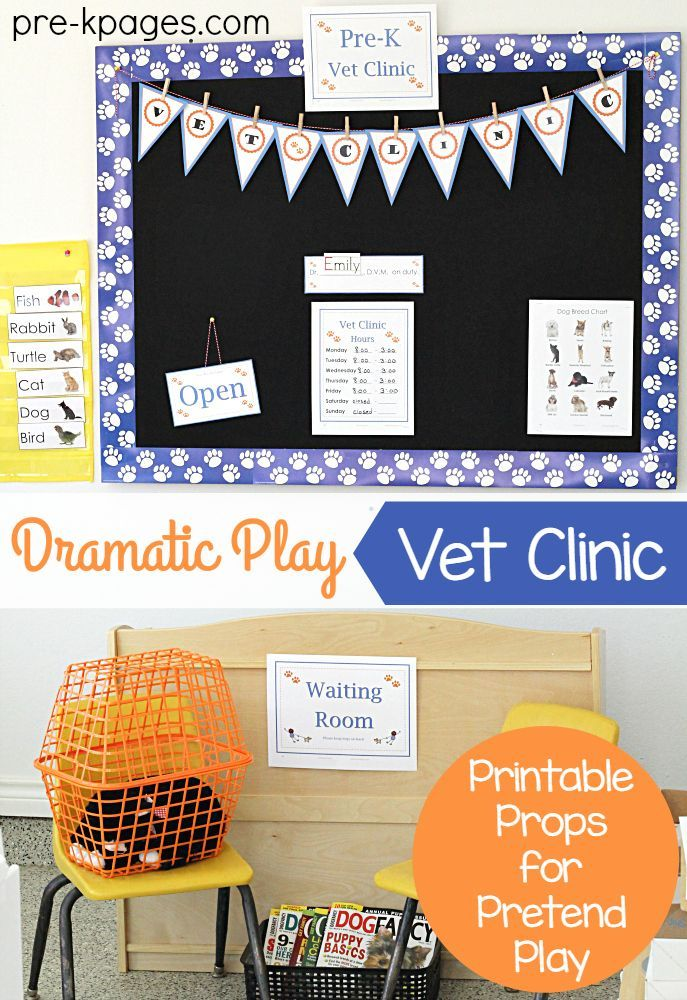 Vet Animal Hospital Dramatic Play Dramatic Play Preschool Dramatic Play Dramatic Play Themes