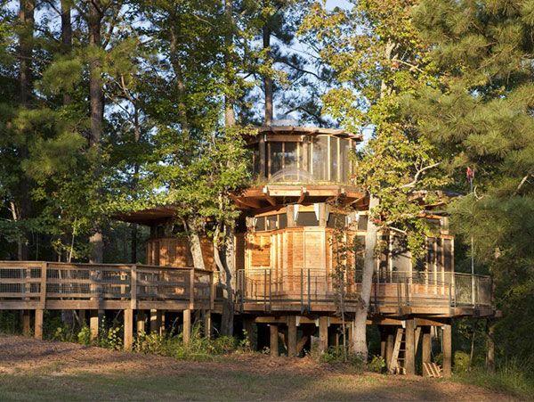 Tree House Home I Want