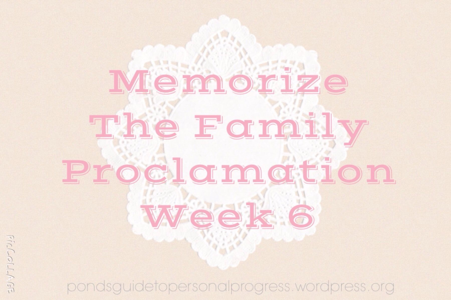 Memorise The Family Proclamation Week 6