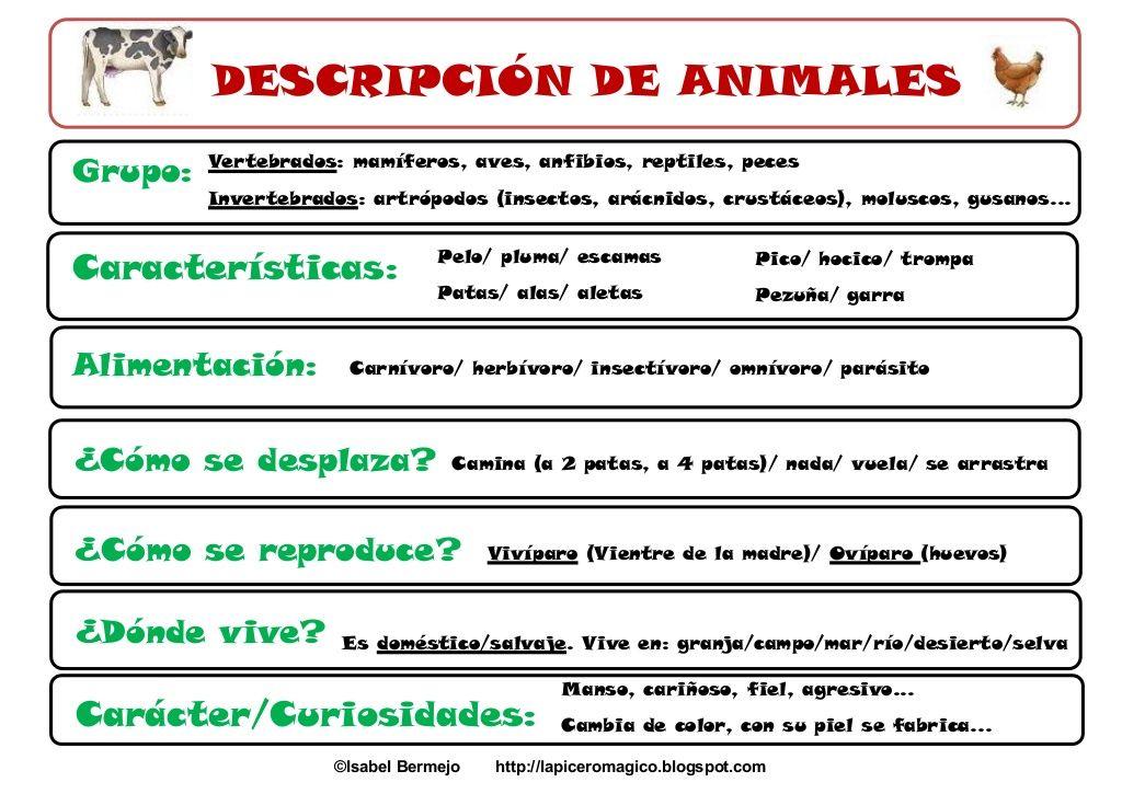 Descripción De Animales Descripcion De Animales Lapicero Magico Tipos De Texto