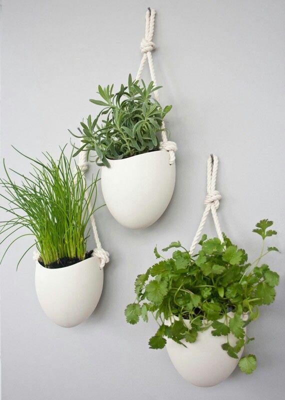Planten Aan De Muur.Planten Aan De Muur Kruidentuin Binnen Plantenhouders En