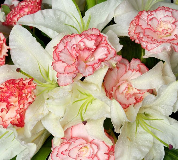 flowers by nino houston florist flowers florists
