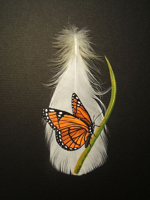 Monarch painted on feather