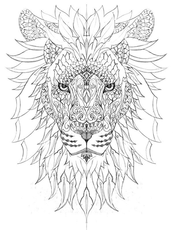 Hand Drawn T Shirt Illustration For Wootz Brand Lion Coloring