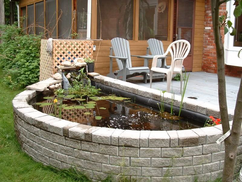 Above ground koi pond design images for Above ground koi pond design ideas