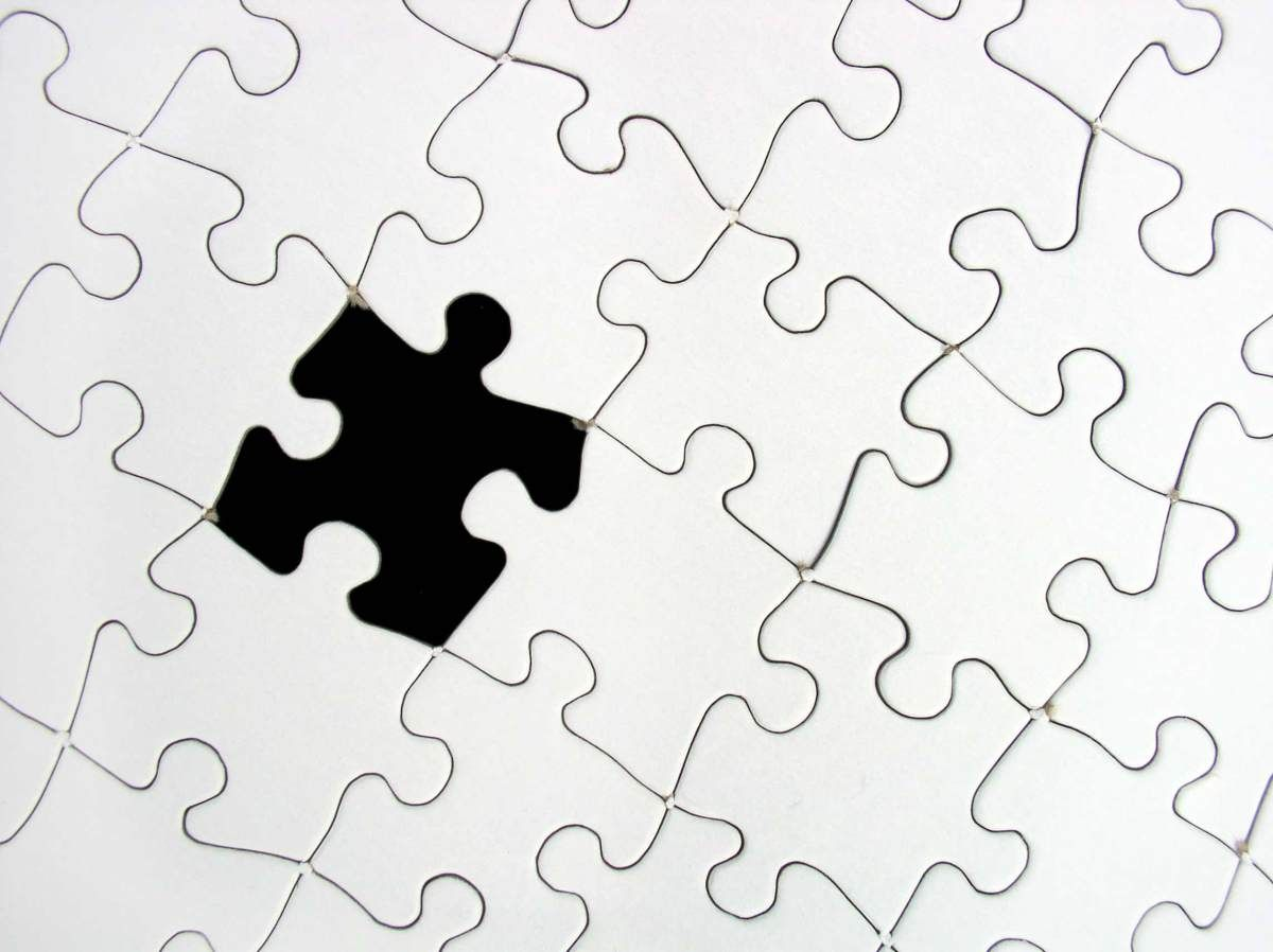 Image result for lost puzzle piece
