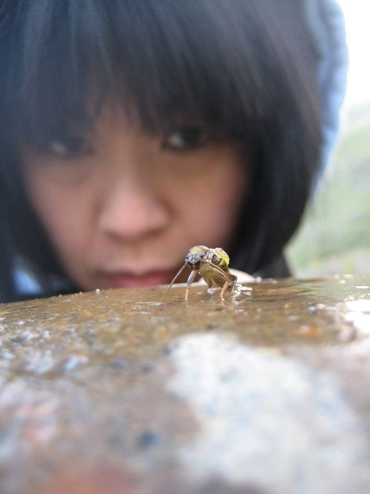 Aileen watching stonefly emerge