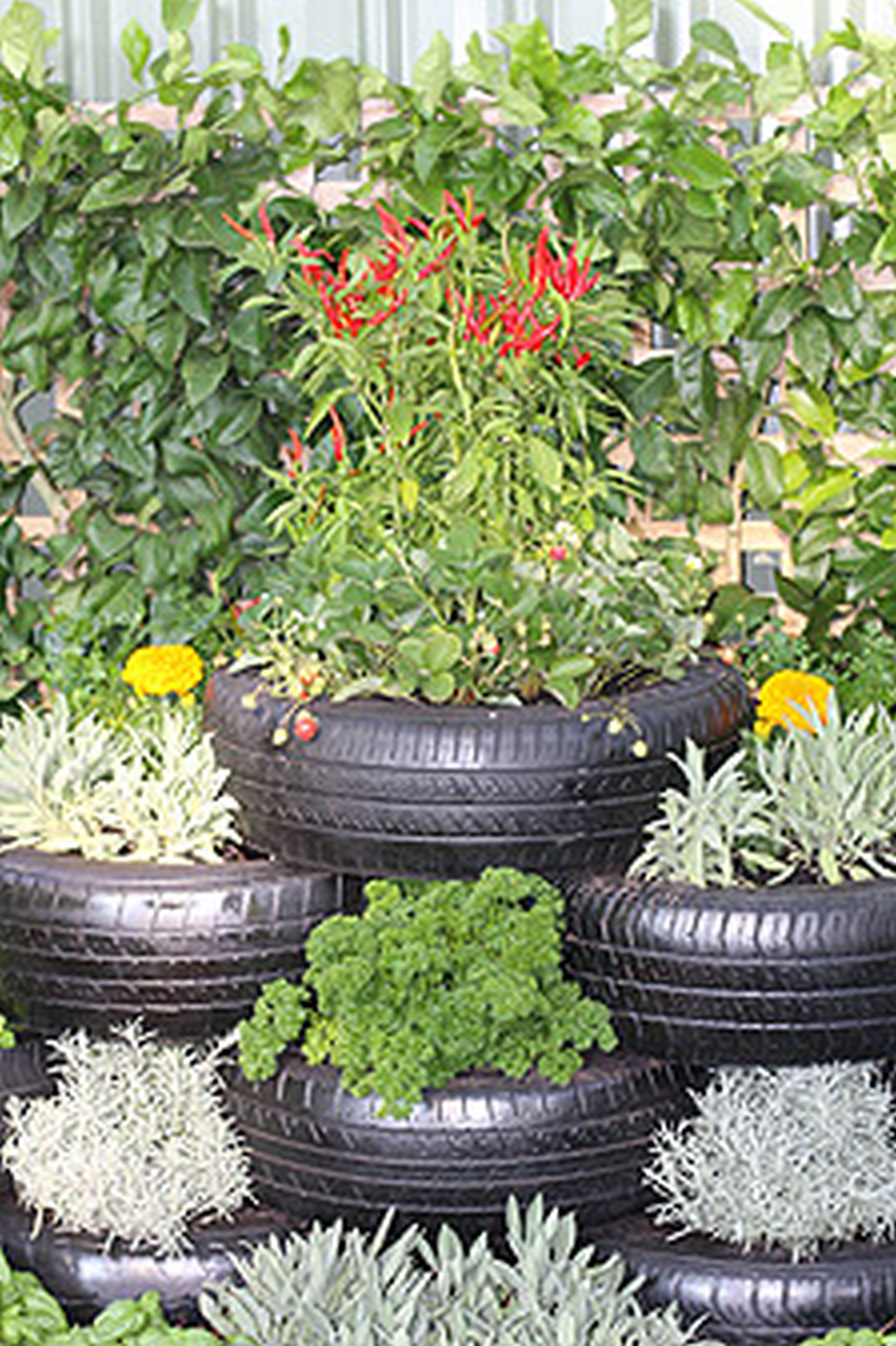 Divine Garden Decor Ideas Inner Lovable Container Garden Ideas .