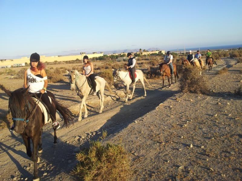 Rutas a caballo, kayak, hinchables y mucho más en Toyoaventura