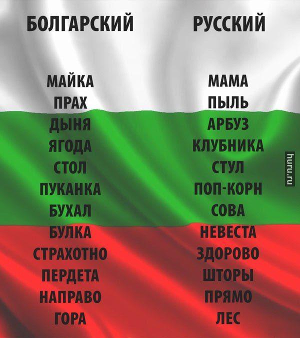 Bolgarsko Russkij Perevodchik Bulgarian Language Language Quotes