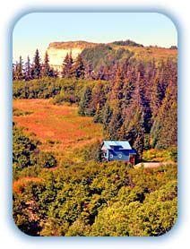 Homer Alaska Cabins ~ Alaskan Cottages, Private Alaskan Vacation Rental  Cabin, View Lodging Homer