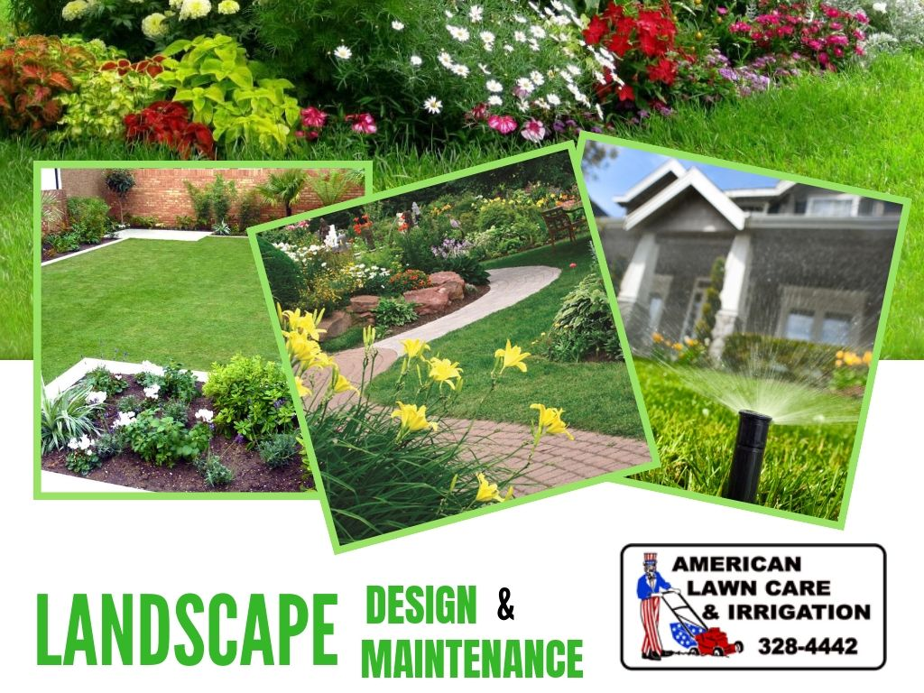Want A Beautiful Backyard Then Visit American Lawn Care Irrigation We Are The Best Landscape Company Offer Commercial Landscaping Lawn Care Cool Landscapes