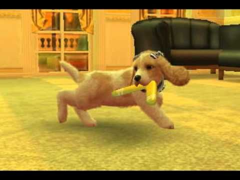 Nintendogs Cats My New Dog Freya Toy Poodle Version Youtube