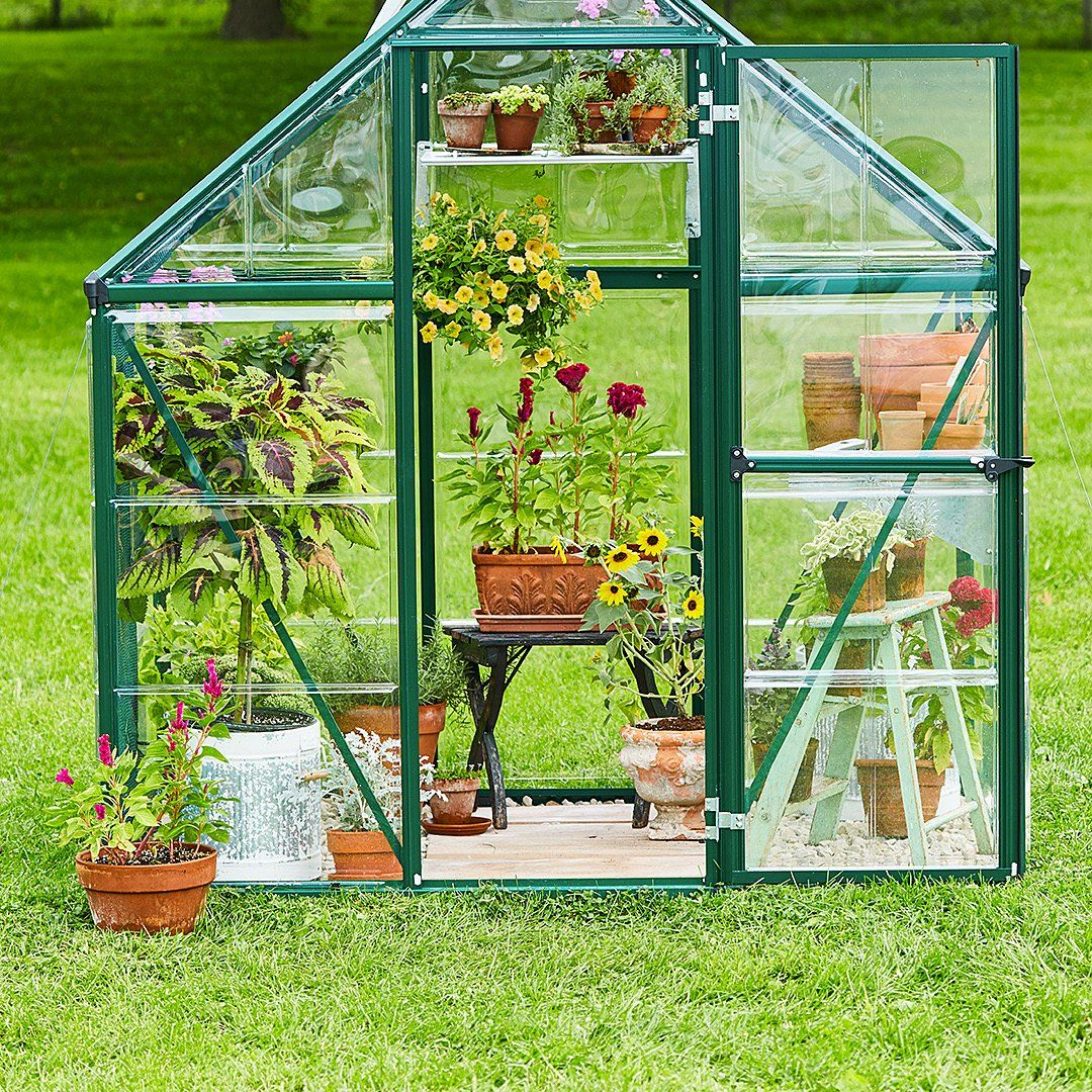 30 Garden Shed Ideas For The Ultimate Outdoor Oasis Backyard Greenhouse Small Greenhouse Best Greenhouse Backyard greenhouse for beginners