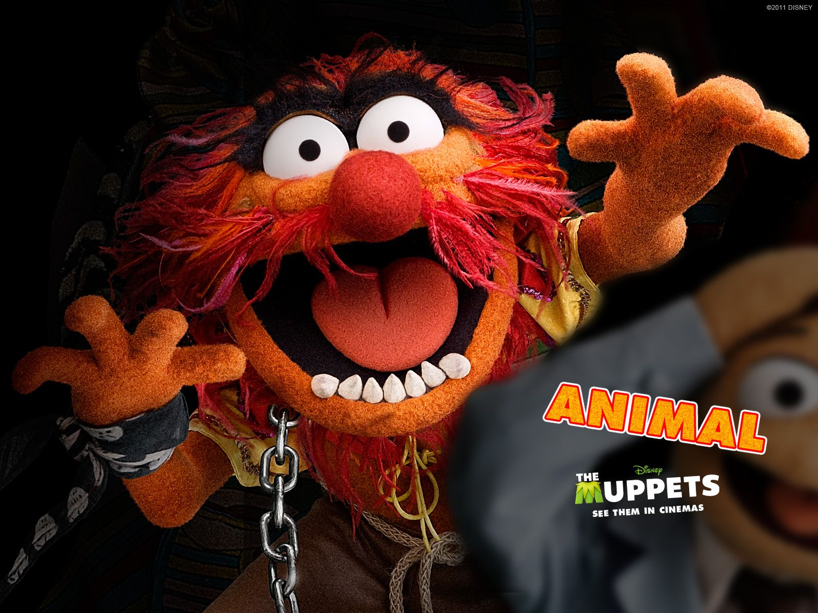 How dateable are you actually animal dental humor and - Animal muppet images ...