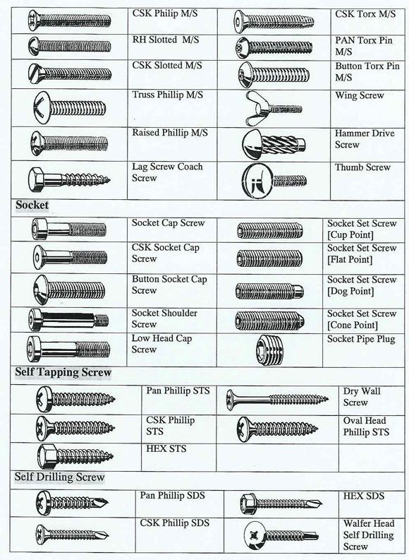 Screws Bolts Fasteners Google Search Power Tool Storage Screws And Bolts Woodworking