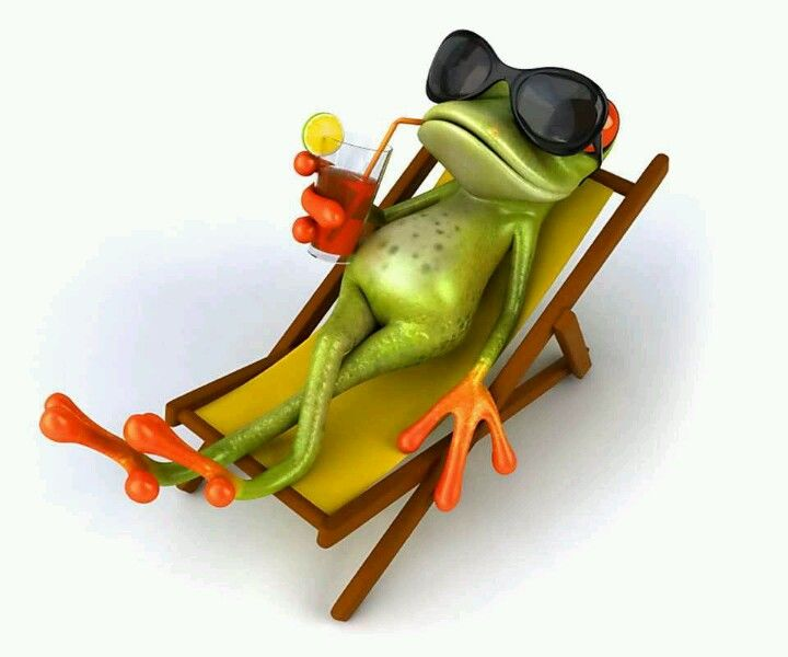 chillen out froggy style angel s i made a funny pinterest
