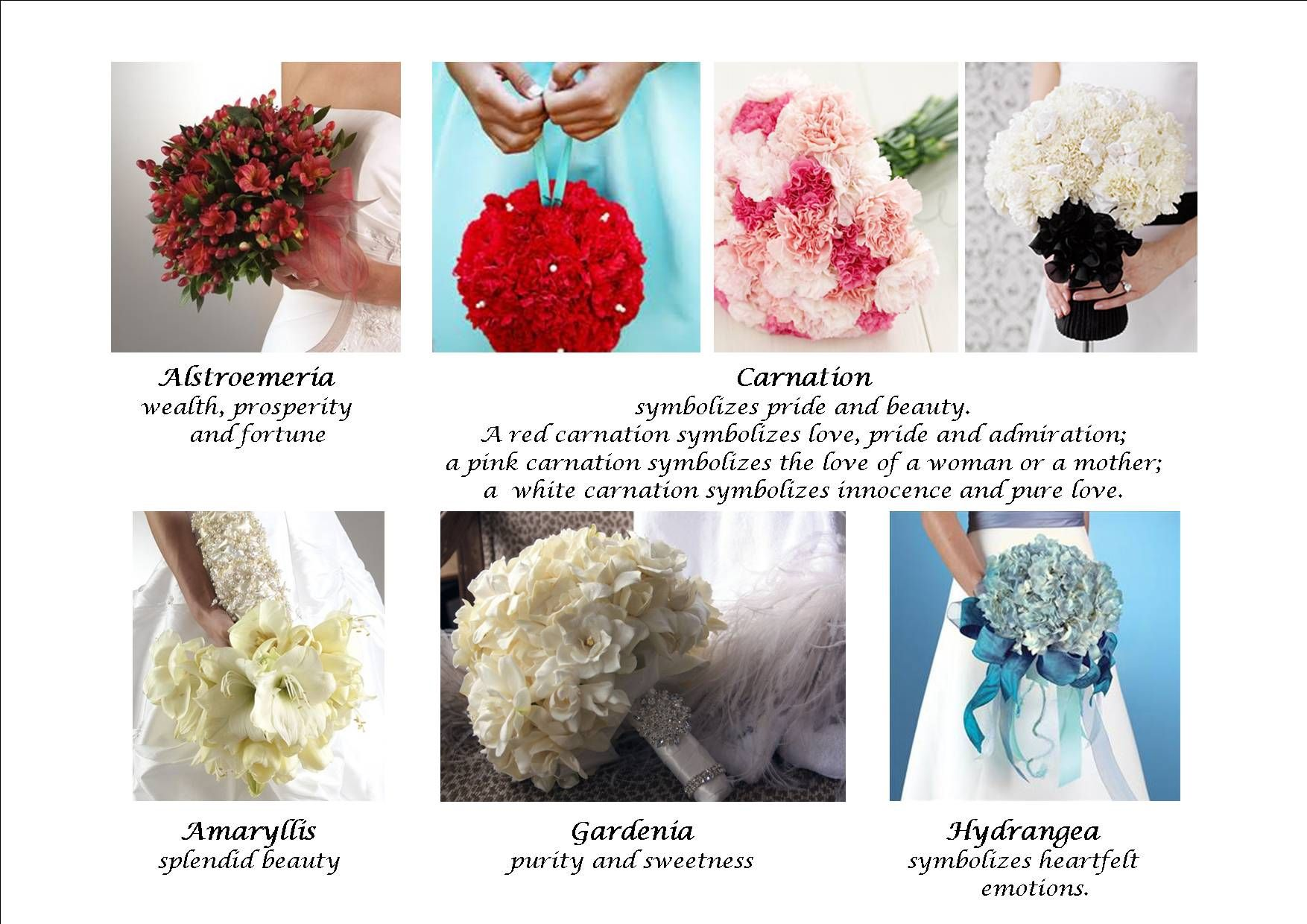 Flowers and Their Meanings meaning flowers fb Bridal