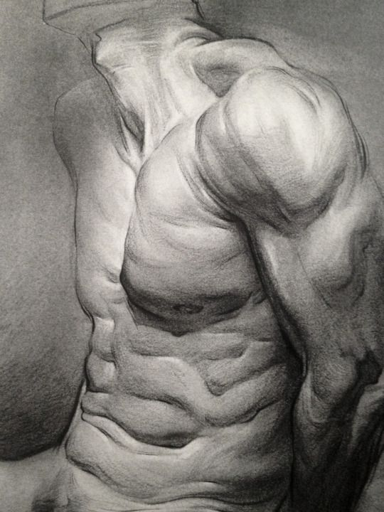 Stan Prokopenko All About Anatomy Artists Proko Pinterest