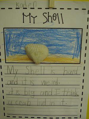 Shells Descriptive Writing - Primary Press Oceans of Fun