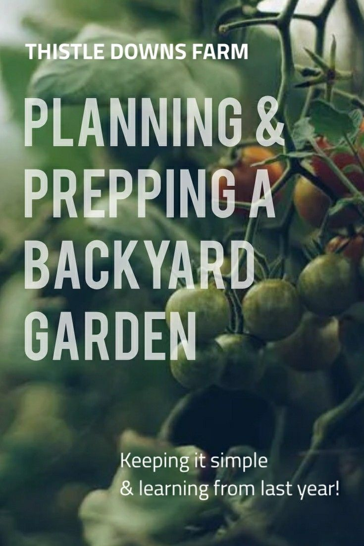 Prepping and Planning Our Backyard Garden for Spring is part of Backyard garden, Organic gardening soil, Backyard, Seasonal garden, Garden care, How to plan - Preparation and planning is essential for a successful gardening season  Today we are going to prep our garden beds and begin planning our backyard garden!