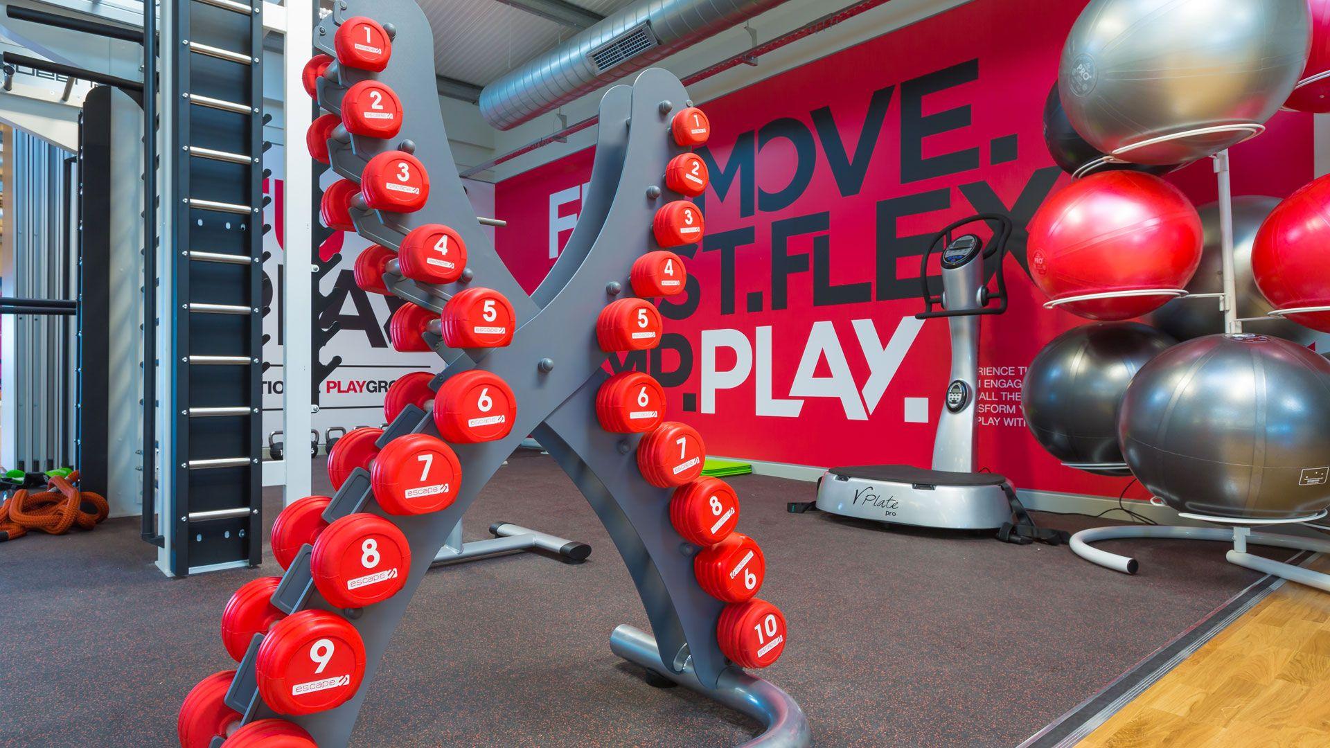 Gallery Lifestyle Fitness Gym Organization Ideas Fitness Support Gym Organizer