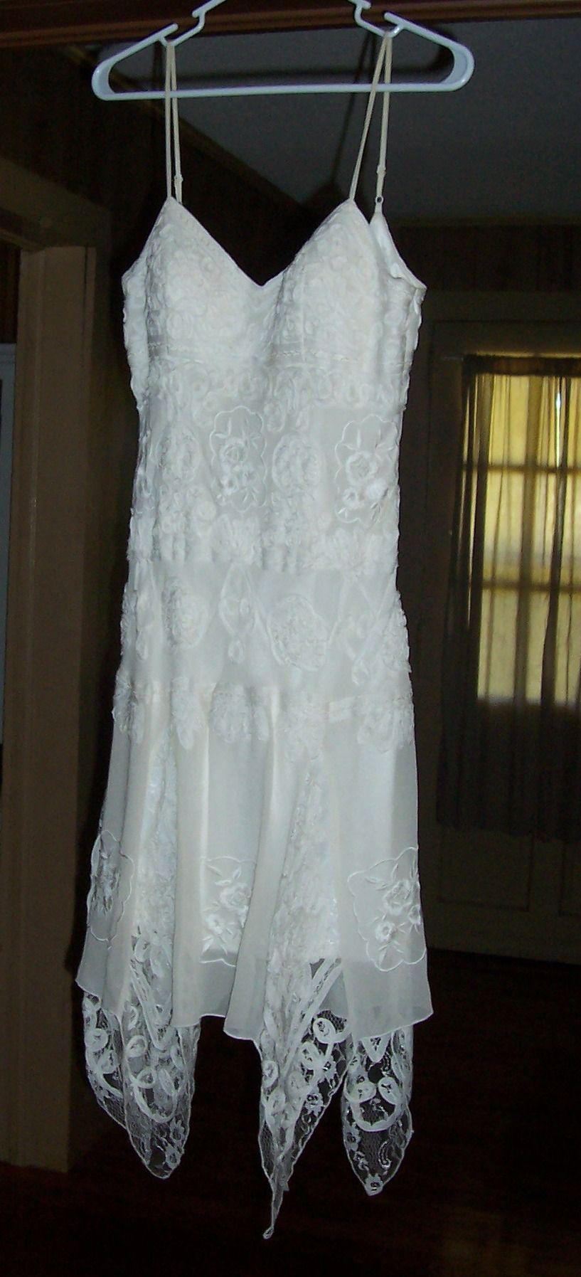 Lauren's Dress