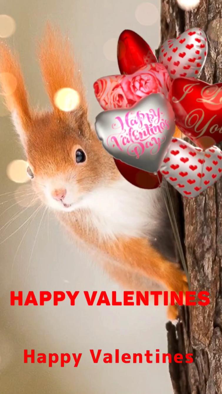 Happy Valentines #Valentines #Valentin #Love