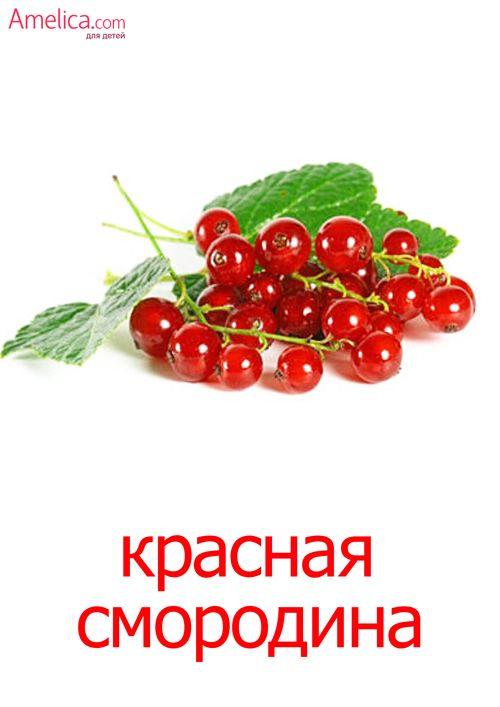 ягоды картинки для детей, карточки домана скачать | Ягоды ...