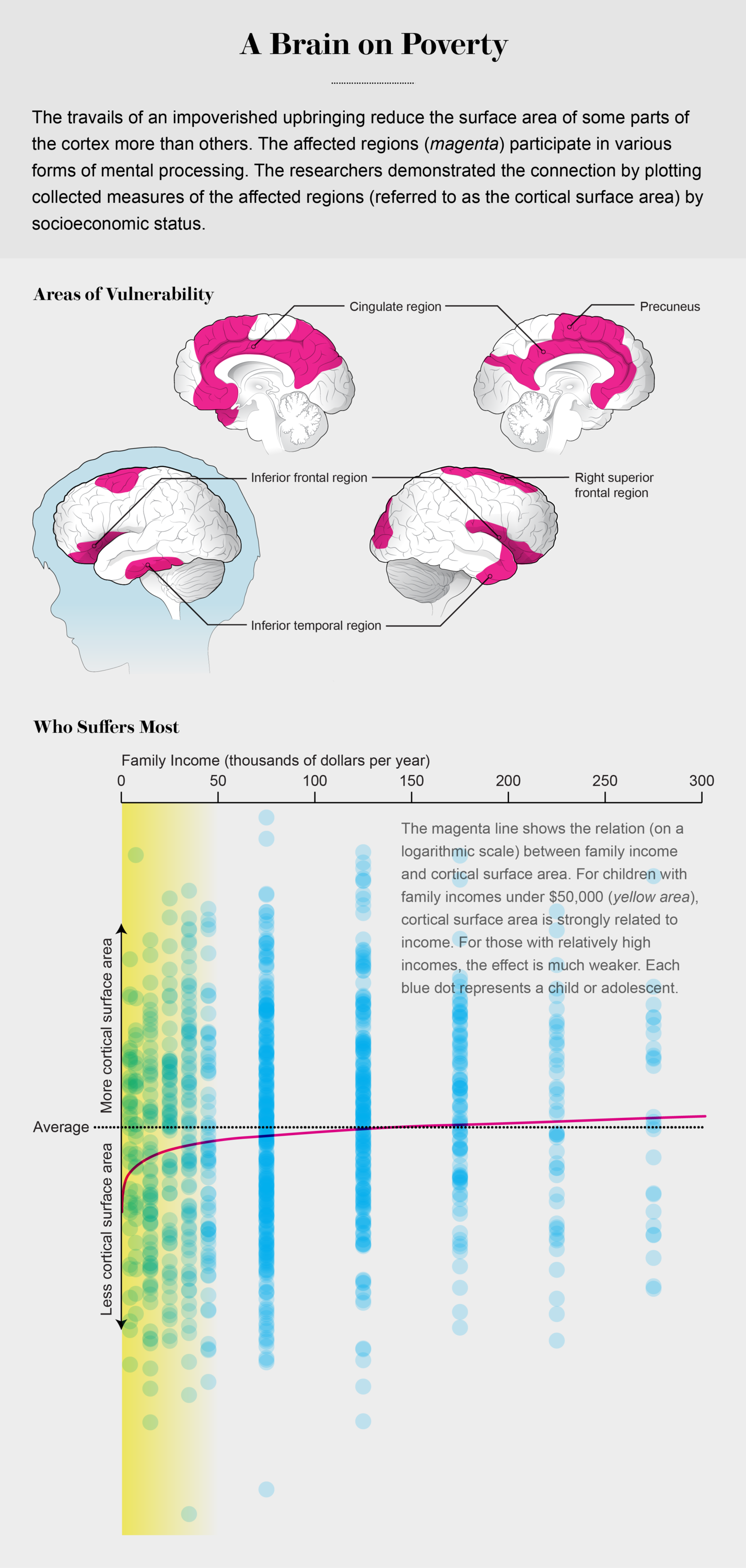 This Is Your Brain On Poverty With >> Data Visualizations Highlight The Surprising Connections Between