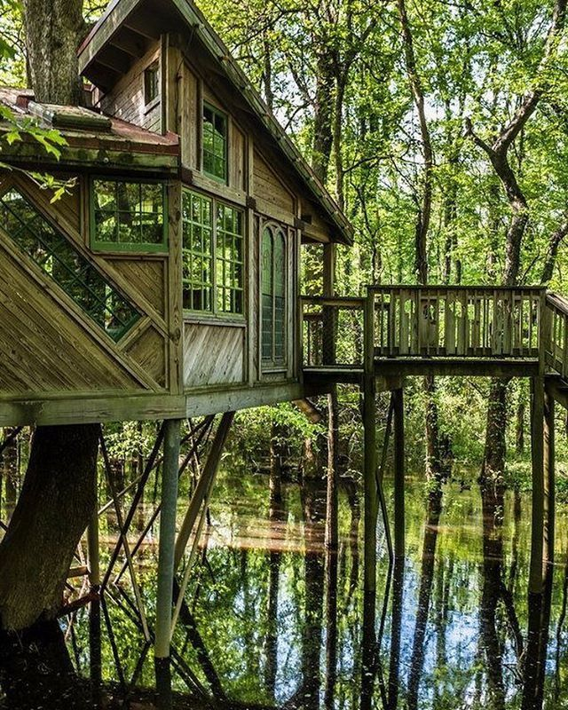 Backyard Bayou Union City Ca: There's Something Very Nostalgic About This Treehouse